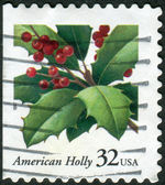 Postage stamps printed in USA, Christmas Issue, shows American Holly (Ilex opaca) — Stock Photo