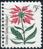 Postage stamps printed in USA, Christmas Issue, shows flower Poinsettia (Euphorbia pulcherrima) — Stock Photo