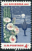 Postage stamp printed in the USA, dedicated to the 50th anniversary of Arizona Statehood, shows Giant Saguaro Cactus — Stock Photo