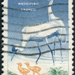 Stock Photo: Postage stamp printed in USA, Wildlife Conservation Issue, shows Whooping Cranes (Grus americana)