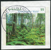 Postage stamp printed by Germany, shows the Bavarian Forest National Park — Стоковое фото