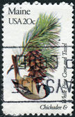 Postage stamp printed in USA, shows the Chickadee and White Pine Cone and Tassel — Stock Photo