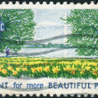 Postage stamp printed in USA, is dedicated to Natural Beauty Campaign for more beautiful cities, parks, highways and streets, shows Washington Monument, Potomac River and Daffodils — Stock Photo #37919469