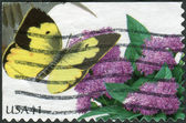 Postage stamp printed in USA, shows the plant Vernonia fasciculata (Prairie ironweed) and Southern dogface butterfly — Stock Photo