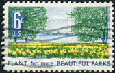 Postage stamp printed in USA, is dedicated to Natural Beauty Campaign for more beautiful cities, parks, highways and streets, shows Washington Monument, Potomac River and Daffodils — Stock Photo