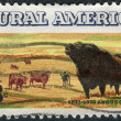 Stock Photo: Postage stamp printed in USA, devoted to centenary of introduction of Aberdeen Angus cattle to US, shows Angus and Longhorn Cattle