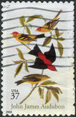 Postage stamps printed in USA, shows Scarlet and Louisiana Tanagers, by John James Audubon — Stock Photo