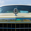 Stock Photo: Emblem Full-size car Ford LTD (Americas)