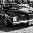 Постер, плакат: Mid size car Pontiac Grand Am black and white