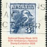 AUSTRALIA - CIRCA 1978: Postage stamp printed in Australia, is dedicated to National Stamp Week, shows Australia No. 95 on Album Page, circa 1978 — Stock Photo #40367171