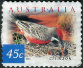 AUSTRALIA - CIRCA 2001: Postage stamp printed in Australia, shows bird Crimson Chat (Epthianura tricolor), circa 2001 — Stock Photo