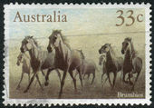 AUSTRALIA - CIRCA 1986: Postage stamp printed in Australia, shows a herd of feral horses Brumby, circa 1986 — Stock Photo