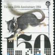 Stock Photo: AUSTRALI- CIRC1984: Postage stamp printed in Australia, dedicated Settlement of VictoriSesquicentenary, shows Leadbeater's possum, circ1984