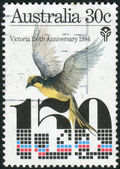 AUSTRALIA - CIRCA 1984: Postage stamp printed in Australia, dedicated Settlement of Victoria Sesquicentenary, shows Helmeted Honeyeater, circa 1984 — Stock Photo
