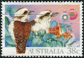 AUSTRALIA - CIRCA 1990: Postage stamp printed in Australia, Christmas Issue, shows Kookaburras (Dacelo), circa 1990 — Stock Photo