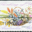 "AUSTRALIA - CIRCA 1991: Postage stamp printed in Australia shows Wildflowers and the inscription ""Thinking of You"", circa 1991 — Stock Photo #40710701"