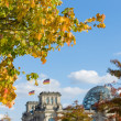 Autumn in Berlin. Yellow leaves. In the background famous historic Reichstag building. Germany. — Stock Photo #41033683