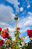 The Fernsehturm (Berlin TV Tower) is a television tower in central Berlin — Stock Photo