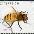 AUSTRIA - CIRCA 2009: Postage stamp printed in Austria, shows the Western honey bee (Apis mellifera), circa 2009 — Stock Photo