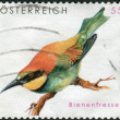 Stock Photo: AUSTRI- CIRC2009: Postage stamp printed in Austria, shows bird EuropeBee-eater (Merops apiaster), circ2009