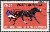 ROMANIA - CIRCA 1974: Postage stamp printed in Romania, dedicated to the 100th anniversary of horse racing in Romania, circa 1974 — Stock Photo