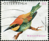 AUSTRIA - CIRCA 2009: Postage stamp printed in Austria, shows bird European Bee-eater (Merops apiaster), circa 2009 — Стоковое фото