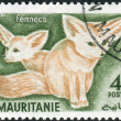 Postage stamp printed in Mauritania, shows nocturnal fox Fennecus zerda — Stock Photo