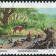 Stock Photo: Postage stamp printed in South Africa, devoted to Environmental Protection, shows soil erosion