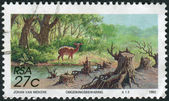 Postage stamp printed in South Africa, devoted to Environmental Protection, shows soil erosion — Stock Photo