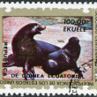Postage stamp printed in Equatorial Guinea, shows Harbor seal (Phoca vitulina) — Stock Photo #42990749