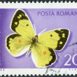 Postage stamp printed in Romania,  shows butterfly Eastern Pale Clouded Yellow (Colias erate) — Stock Photo