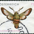 Postage stamp printed in Austria, shows butterfly Hemaris fuciformis — Stock Photo