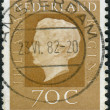 Postage stamp printed in the Netherlands, shows Queen Juliana — Stock Photo #42994849