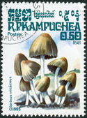 Postage stamp printed in Kampuchea, shows a mushroom Coprinus micaceus — Stock Photo