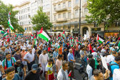 March of Solidarity with the Palestinian People. Conflict in the Middle East between Israel and Palestine. — Stock Photo