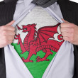 Business mwith Welsh flag t-shirt — Stock Photo #19019665