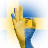Firman acuerdo con bandera sueca de la mano — Foto de Stock