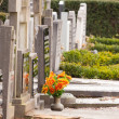 Stock Photo: Fresh flowers on grave
