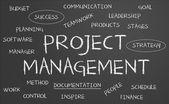 Nube de palabra de gestión de proyecto — Foto de Stock