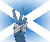 Hand peace sign with flag of Scotland — Foto de Stock
