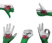 Hand set with the flag of Wales — Stock Photo