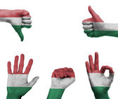 Hand set with the flag of Hungary — Stock Photo
