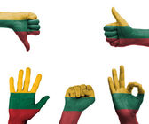 Hand set with the flag of Lithuania — Stock fotografie