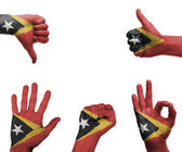 Hand set with the flag of East Timor — Stock Photo
