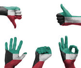Hand set with the flag of Kuwait — Stock Photo