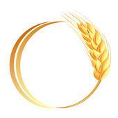 Wheat ears icon — Wektor stockowy