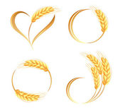 Abstract wheat ears icons  — Stock Vector