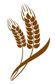 Abstract wheat ears icon — Stock Vector