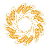 Wreath of wheat ears — Stock Vector