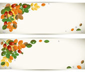 Autumn leaves with rose-hips, background — Stock Vector